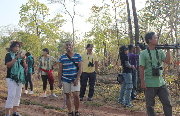 Siem Reap Bird Watch Day Tour