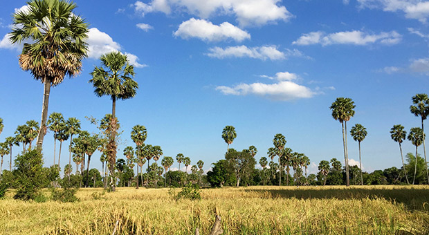 Kampong Chhnang Travel Guide